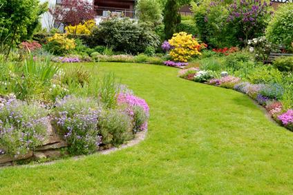 Gartenbau  Gartenbau Mike Bolowski · Verden · Walsrode · Rethem - Startseite